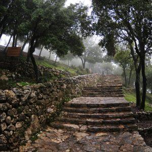 Liban Annaya